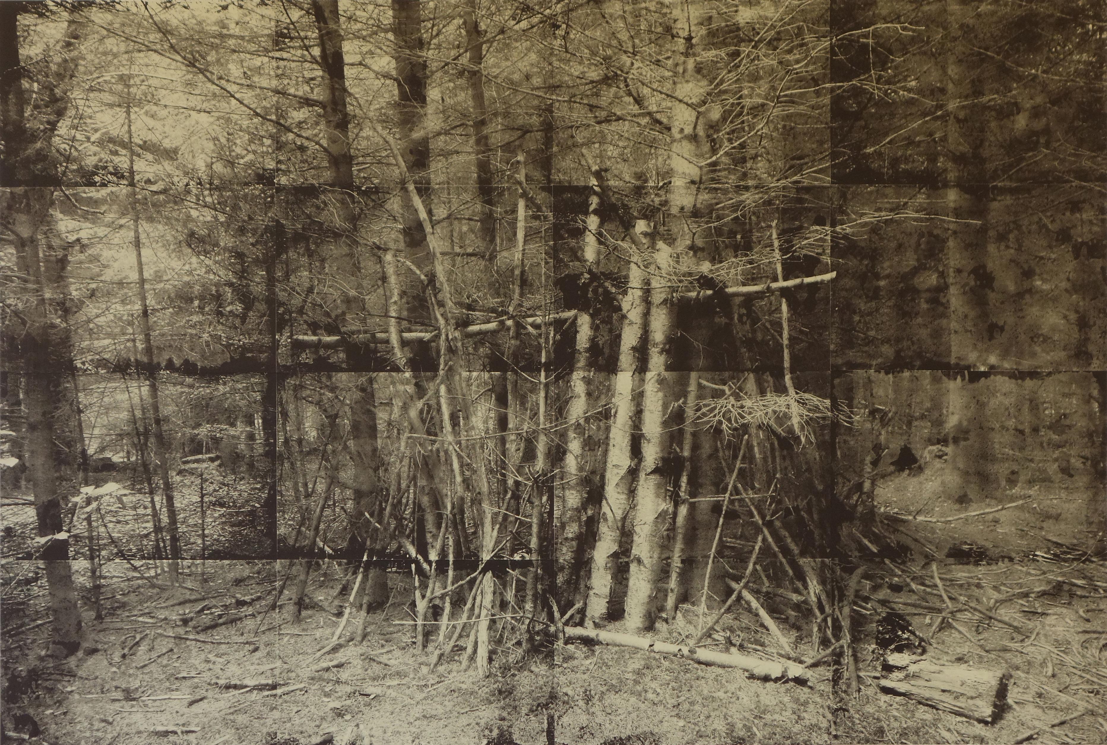 Tatjana Erpen, im Wald, 2016, Copyright: Tatjana Erpen