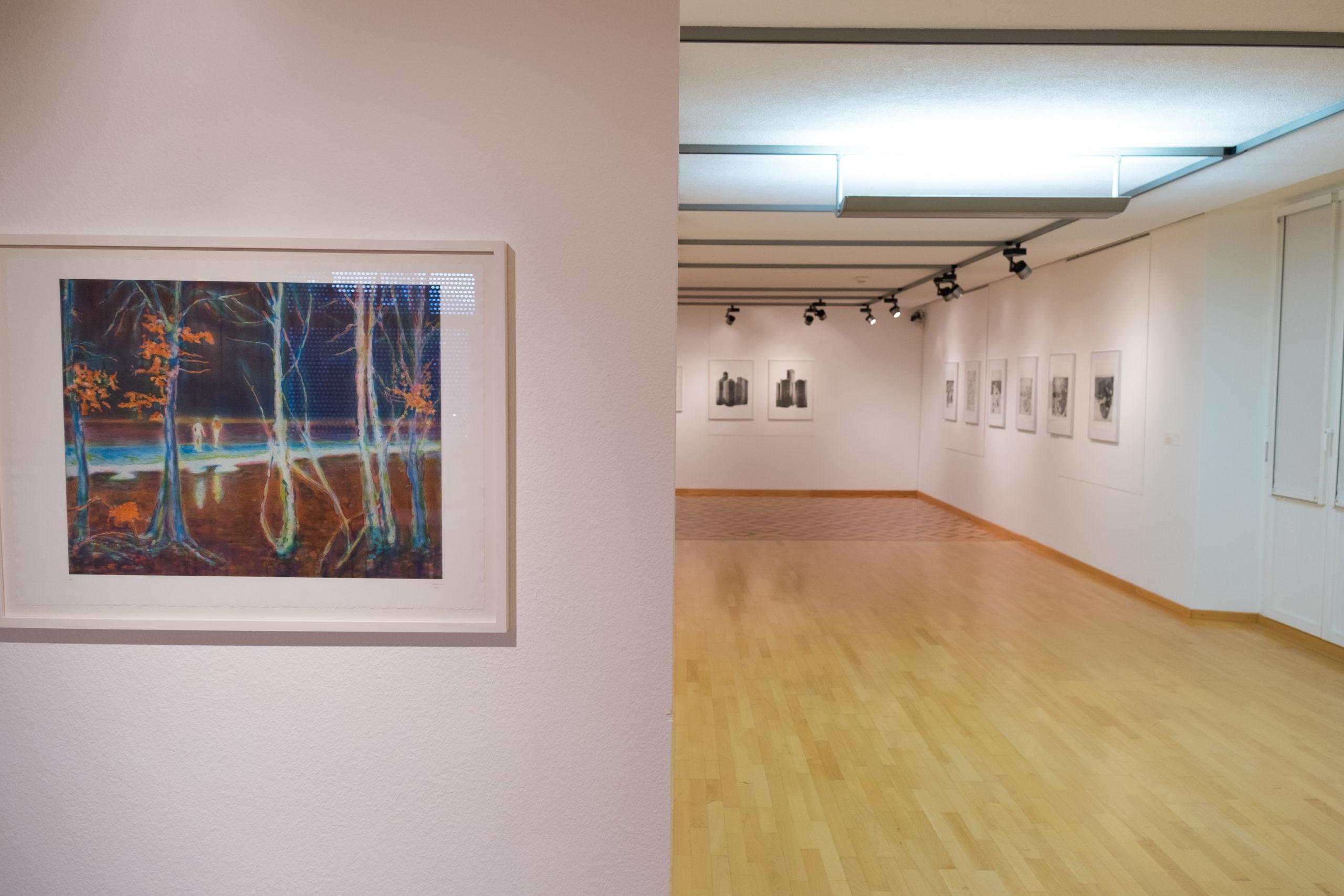 Ausstellungsansicht «20 Jahre Kupferdruckwerkstatt Gentinetta», 22. März - 24. Mai 2020, Kunsthaus Grenchen, Foto: Laura Hadorn © Kunsthaus Grenchen