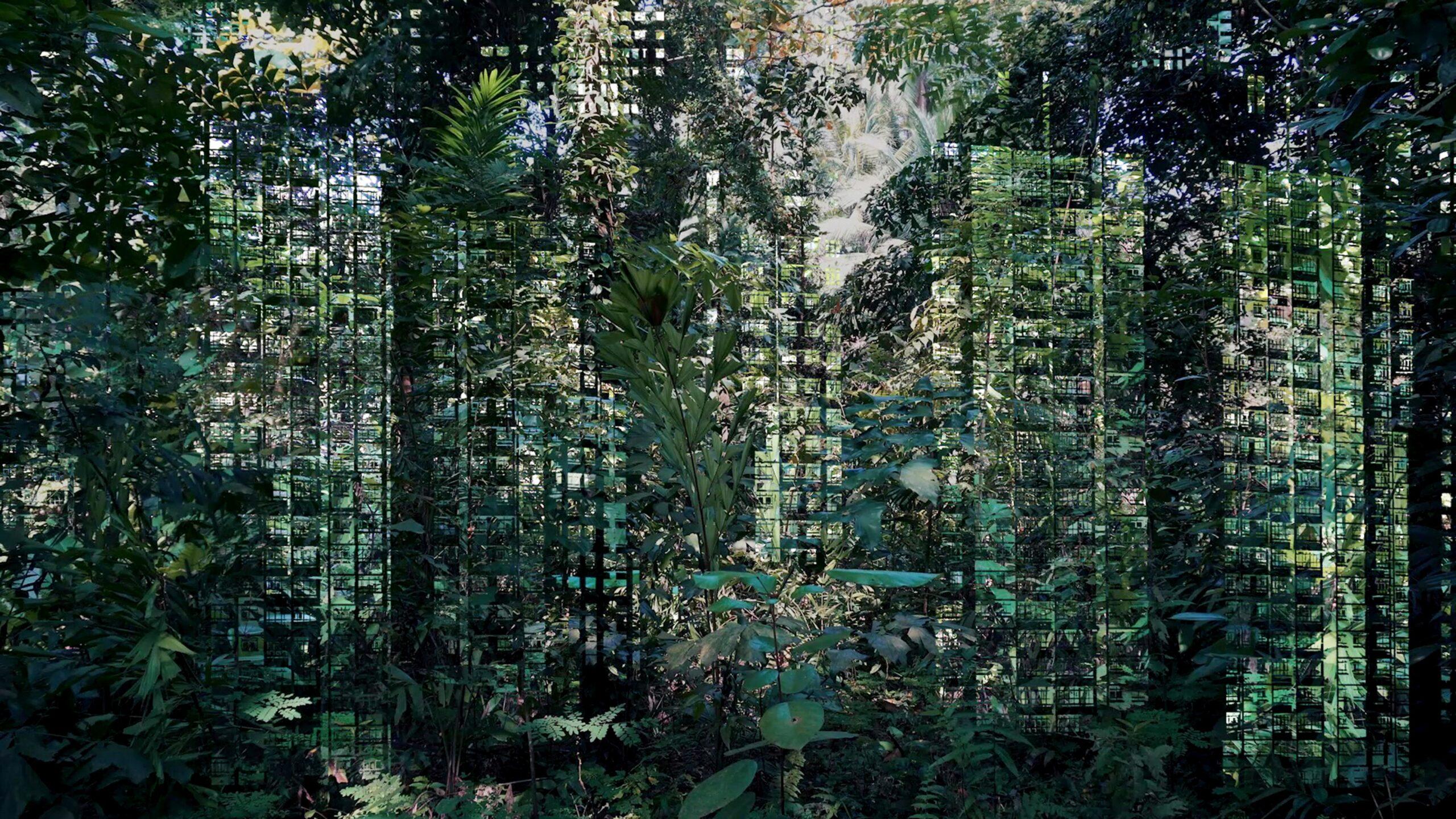 xx_Jäger-Monica-Ursina_Forest-Tales-and-Emerald-Fictions_2019_KHG_21_Im-Wald