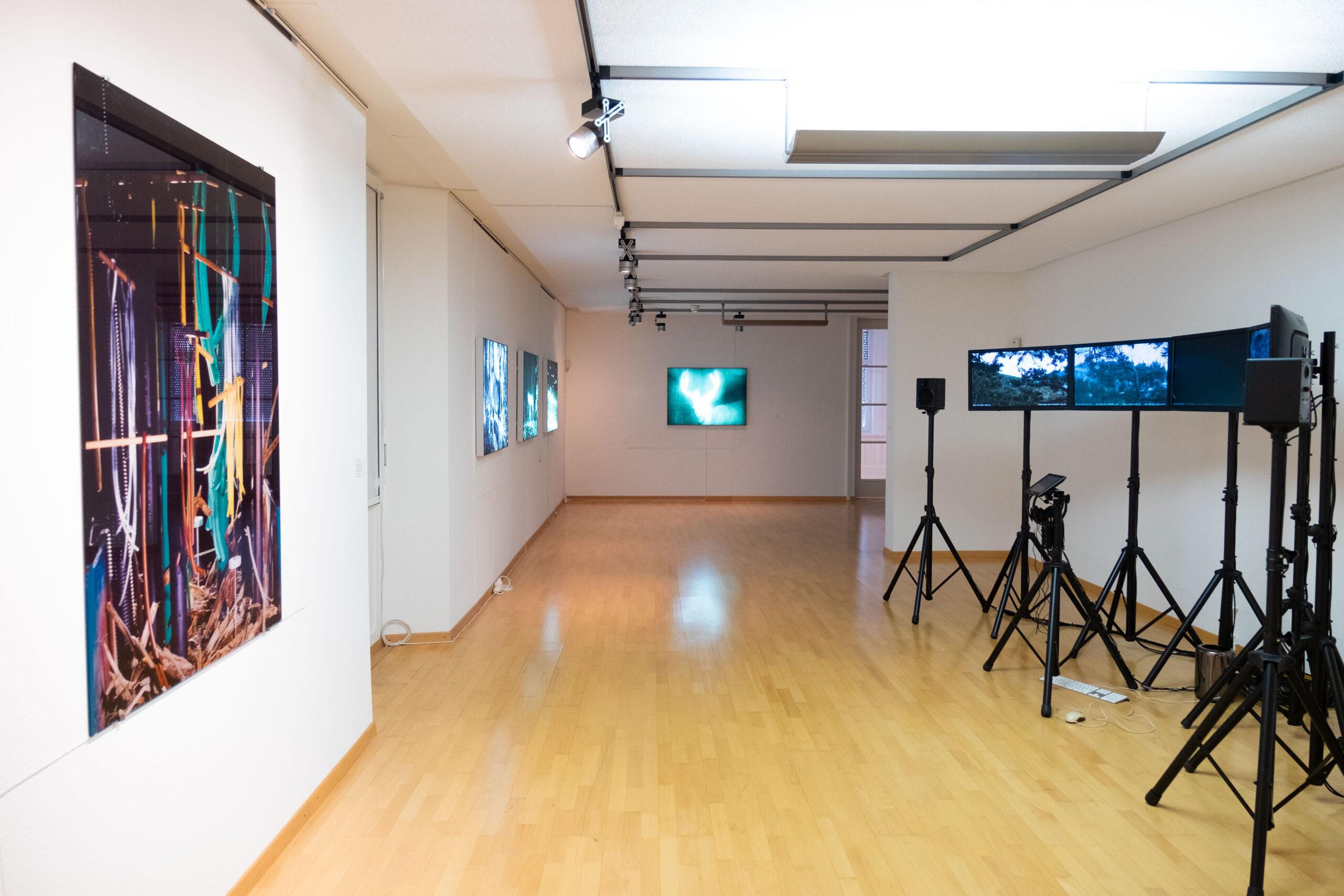 Blick in die Ausstellung «Im Wald», Kunsthaus Grenchen, Villa Girard