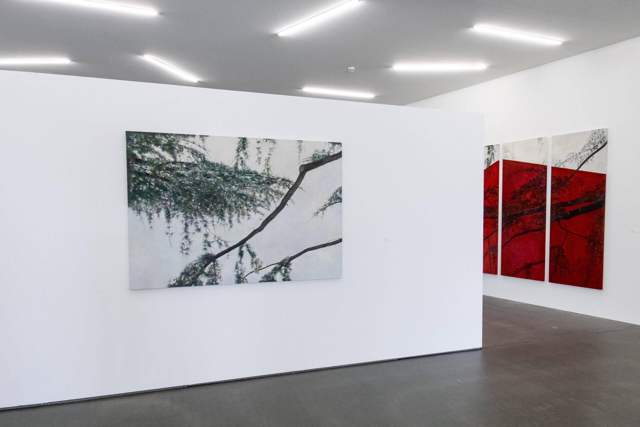 Blick in die Ausstellung «Im Wald», Kunsthaus Grenchen, Neubau