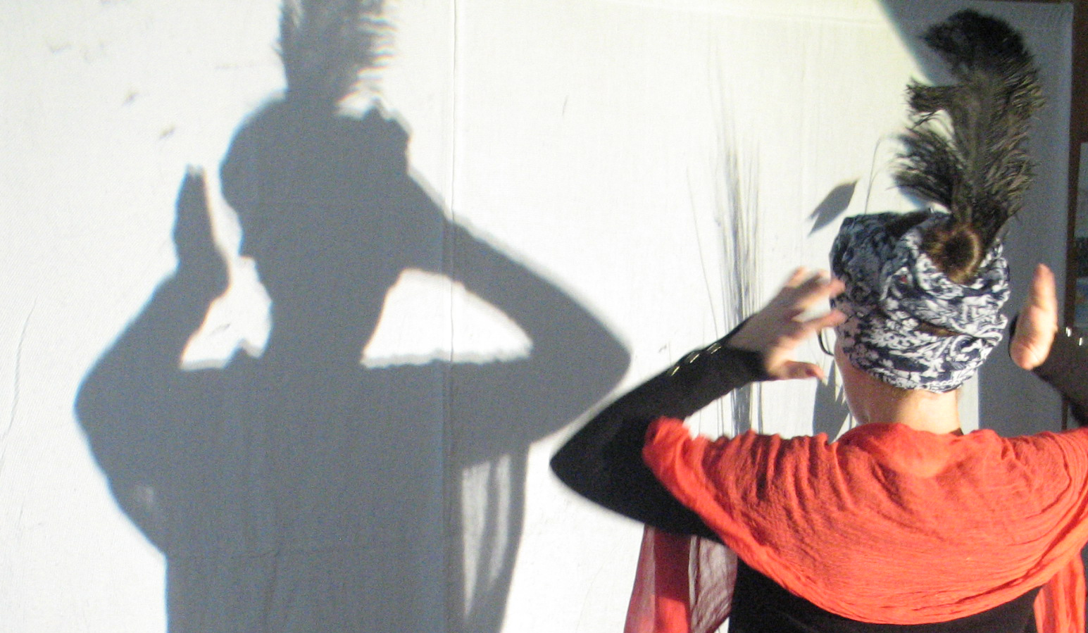 Schattenspiel «Prinz Aladin»